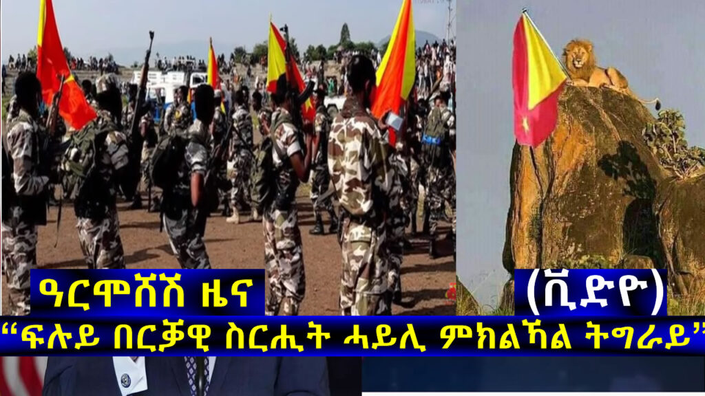 "Update: ""Tigray Defense Forces enjoyed a big Victory and Heading to the Final Operation"""