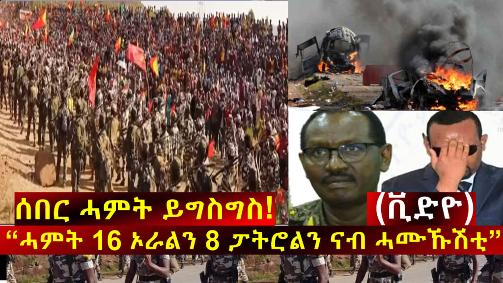 "Update: ""Special Operation by Tigray Defense Forces … Big lose for ENDF allied Forces"", sources"