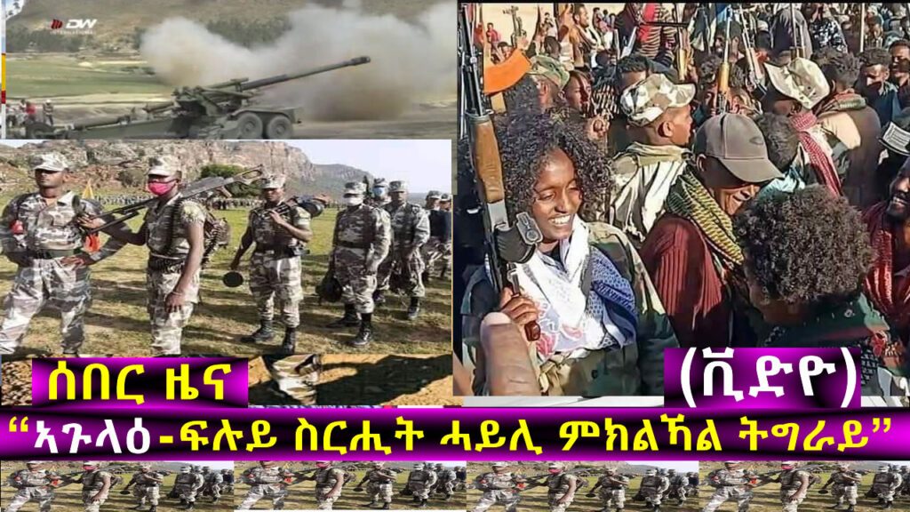 "Tigray: ""Agulae' – Special Operation in the town of Agulae' and more"""